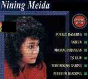nining_meida